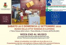 Ozzano-week-end-museo