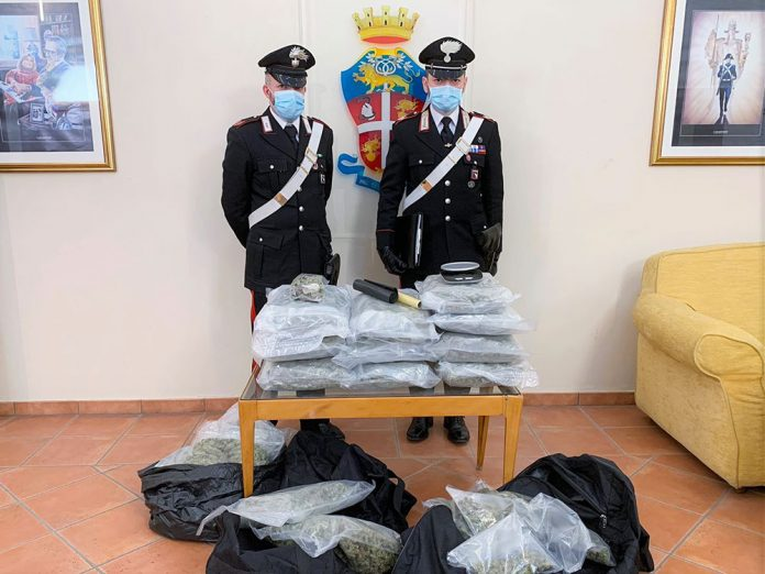 Bologna droga sequestrata
