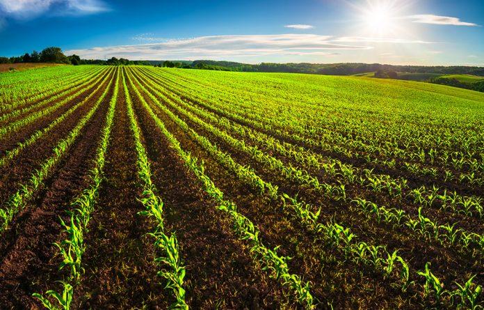 Emilia Romagna agricoltura