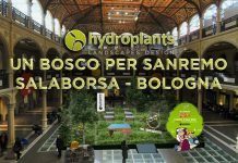 Bologna Salaborsa bosco Sanremo