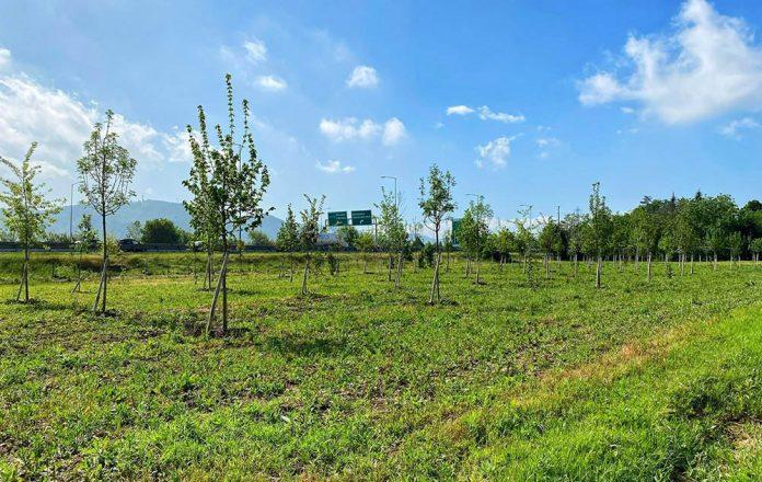 Casteldebole nuova area verde