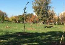 Giardino fenologico Bologna