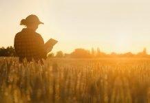 Giovane donna agricoltore