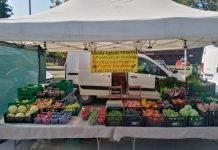 Frutta verdura azienda vita sana